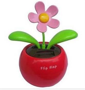 Bild von Flip Flap Rot mit rosa Blüte