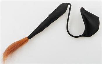 Bild von Design 43 - schwarz + Schwanz